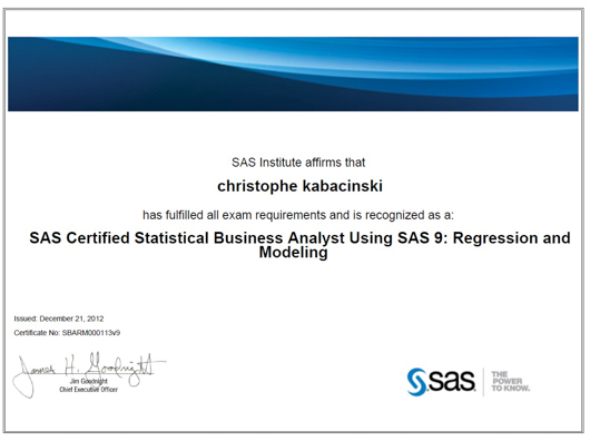 BeOptimized - SAS Consulting